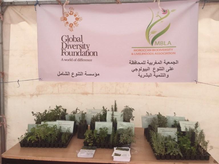 plant conservation association