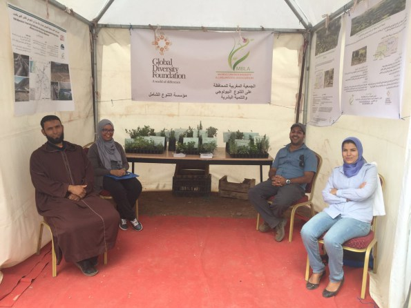 Festival season in the High Atlas – engaging with communities on conservation and traditional plant knowledge